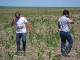Con las TIC, los jóvenes impulsan algunos cambios en la agriculturafamiliar